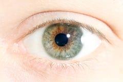 Closeup of a human eye. Close up of a human eye Stock Images
