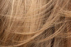 Close-up of human hair. Close-up of Blond human hair Royalty Free Stock Photography