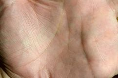 Close up of human hand skin with visible skin texture and lines.  Stock Photos