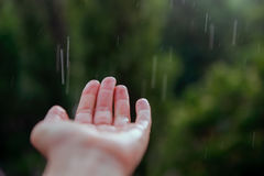 Close up Human hand under the spring or summer rain. Selective focus royalty free stock image