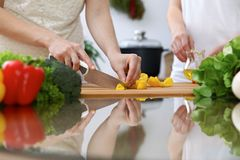 Close-up of  human hands  cooking in a kitchen. Friends having fun while preparing fresh salad. Vegetarian, healthy me. Al and friendship concept Stock Image