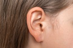 Close up of human head with female ear. Listening or deafness concept stock images