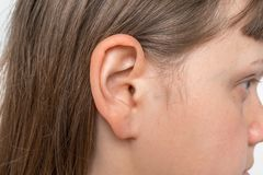 Close up of human head with female ear. Listening or deafness concept royalty free stock photos