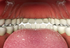 Close up of human mouth inner, oral health concept Stock Photos