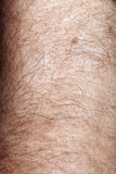 Close-up of human skin Royalty Free Stock Photos