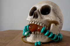 Close up of Human skull model and beads Stock Photography