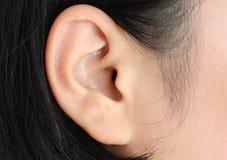Close up humano da orelha Fotografia de Stock Royalty Free