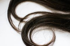 Close-up humano do cabelo encaracolado no branco foto de stock