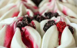 Close up of ice cream with forest frozen berries. Summer food dessert top. Royalty Free Stock Photos