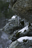A close up of the icicles on rocks. Stock Photo
