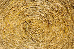 Close up ihay straw stack texture Stock Images