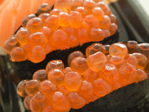 Close up Ikura sushi Royalty Free Stock Images
