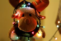 Close-up of Illuminated Christmas Tree Stock Images