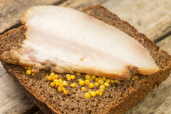 Close up image bacon sandwich with mustard. Royalty Free Stock Photography