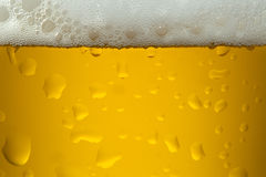 Close up image of a beer Royalty Free Stock Photography