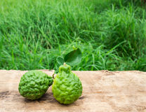 Close up image of bergamot on wooden. With green grass background stock photo