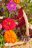 Close up image of brilliantly colored flowers Stock Photo