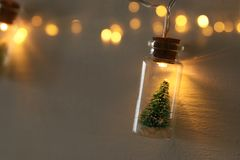 Close up image of Christmas tree in the masson jar garland light. Close up image of Christmas tree in the masson jar garland light royalty free stock image