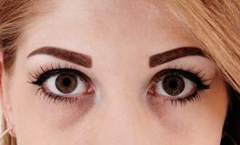 Close-up of dark eyes of young woman Stock Photography