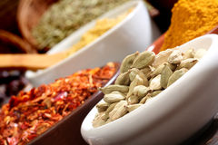Close up image of different spices, Royalty Free Stock Images