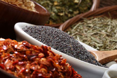 Close up image of different spices Royalty Free Stock Images