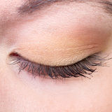 Close-up image of an eye of a young woman in makeu. Closed eye with bronze eyeshadow and mascara Royalty Free Stock Photos