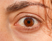 Close up image of female astonish brown eye Royalty Free Stock Photography