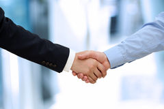 Close-up image of a firm handshake  between two colleagues in of Royalty Free Stock Images
