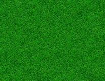Close-up image of fresh green grass stock image