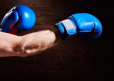 Close-up image of hands with blue and red gloves against wooden wall. Royalty Free Stock Images