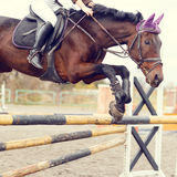 Close up image of jumping horse over hurdle. Bar on show jumping competition. Warm color toned image Royalty Free Stock Photos