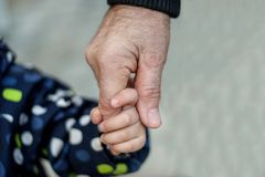 Close up image of little toddler child holding hand of a senior relative: grandfather or great grandfather royalty free stock image