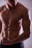 Close up image of muscular perfect male torso Royalty Free Stock Images