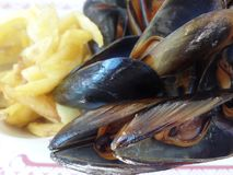 Close up image of mussels and fries stock images