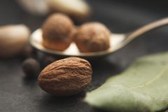 Close up image of nutmeg and spices around on dark table. Selective focus Royalty Free Stock Photography