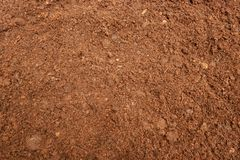 Peat Moss Soil Background stock image