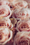 Close up image of pink roses. Wedding flower bouquet. Bridal bouquet Stock Photo
