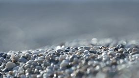 Close up image with sand and gravel from a tropical beach.  stock footage