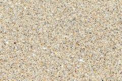 Close-up image of a sandy beach Stock Photos