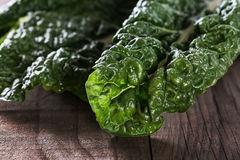 Close up image of silverbeet leaves Stock Photos