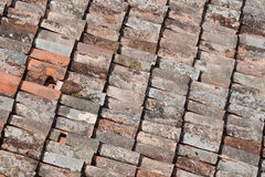 Close up image on very old roof tiles Royalty Free Stock Images