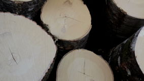 Close-up image of the wood end of the logs stock video