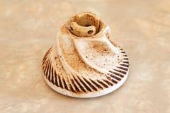 Worn Ceramic Coffee Grinder Blade royalty free stock photos