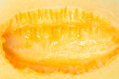Close-up for inside cantaloupe background Stock Image
