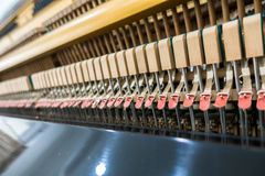 Close up of Inside the piano with selective focus Close up of In Stock Photos