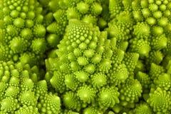 Close up of interesting shape roman cauliflower Brassica oleracera.  stock photography