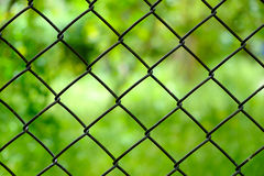 Close up iron wire fence isolated Royalty Free Stock Image