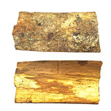 Close-up of isolated broken stub log bark. With wooden texture isolated on white background stock images