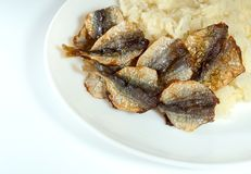 Sticky rice and fried sun-dried fish on plate Stock Image