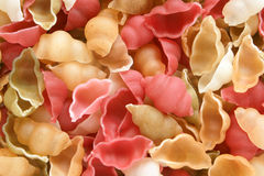 Close-up of italian pasta - colored seashells Royalty Free Stock Images